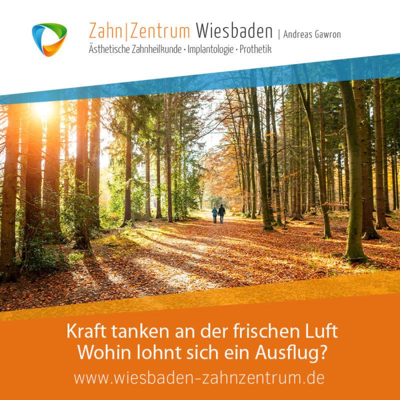 2020-11 Herbstspaziergang - Zahnarztpraxis in Wiesbaden